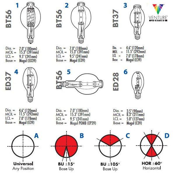 Venture Bulb chart